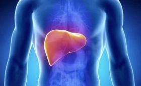 Прочистване на организма и махане на токсините от черния дроб